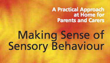 Making Sense of Sensory Behaviours Logo